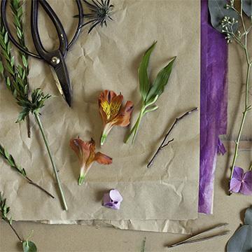 B Petalstopixels Messy Detail