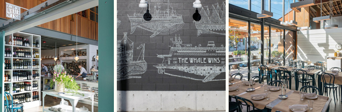 Whale Wins Collage